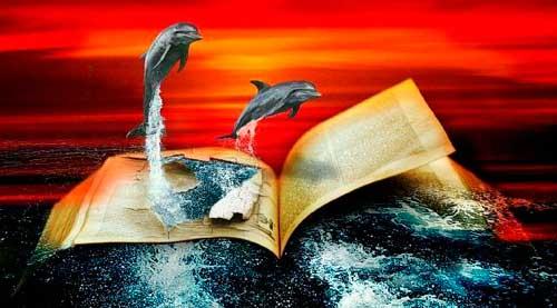 tierra de delfines mi nombre es delfin 03 232x300