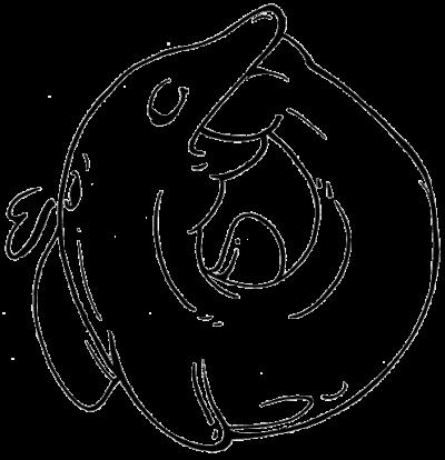 tierra de delfines símbolo 11 2 500x514