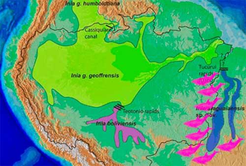 Mapa distribución Boto Araguaian, Inia araguaiaensis