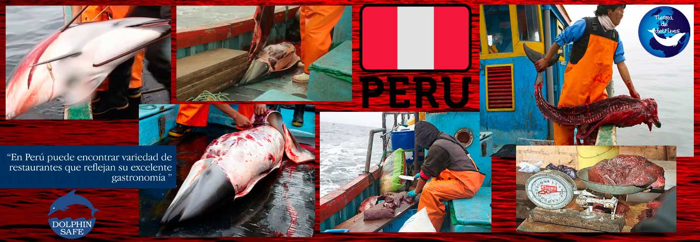 Perú 03