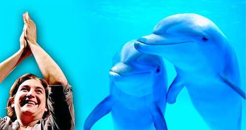 barna delfines libre 03 texto