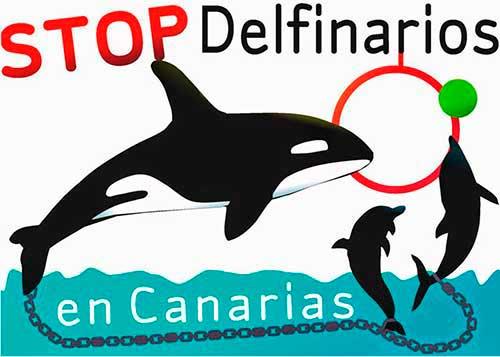 delfinario 03