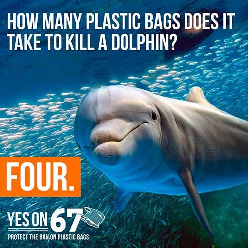 cuatro bolsas de plastico matan delfin