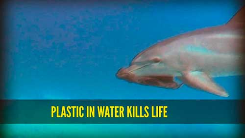 plastic in water kills life