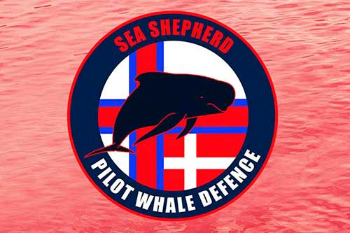logo defensa ballena piloto sea sepherd 01