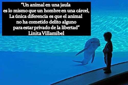 Zoo Spain Madrid 10