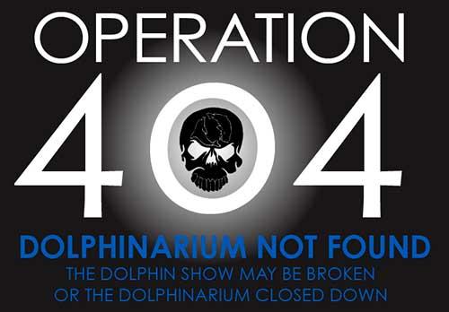 operacion 404