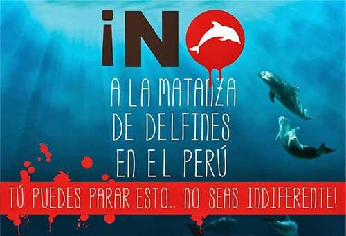 Perú 06