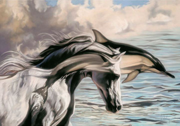 Terra de delfines Introducción 08