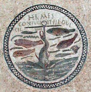 tierra de delfines símbolo 13 500x503