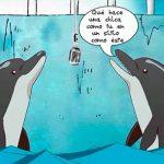 conversacion entre delfines 00 texto