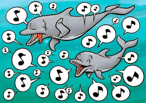conversacion entre delfines 04 texto