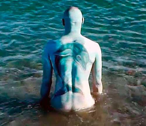 Tierra de delfines Tatuaje 11 500x431