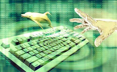 algorimo reconoce voz delfines 04 texto