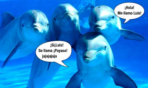 algorimo reconoce voz delfines 07 texto