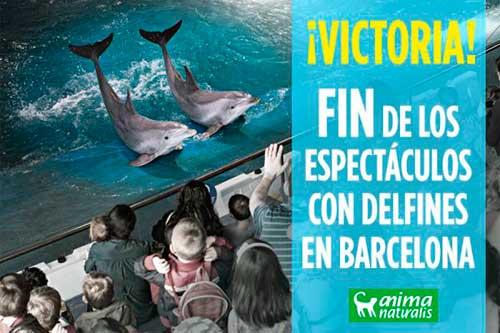 barna delfines libre 02 texto