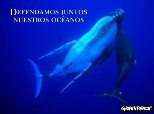 contaminacion oceanos 05 texto
