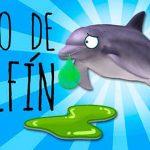 moco de delfin y ecolocacion 01 texto