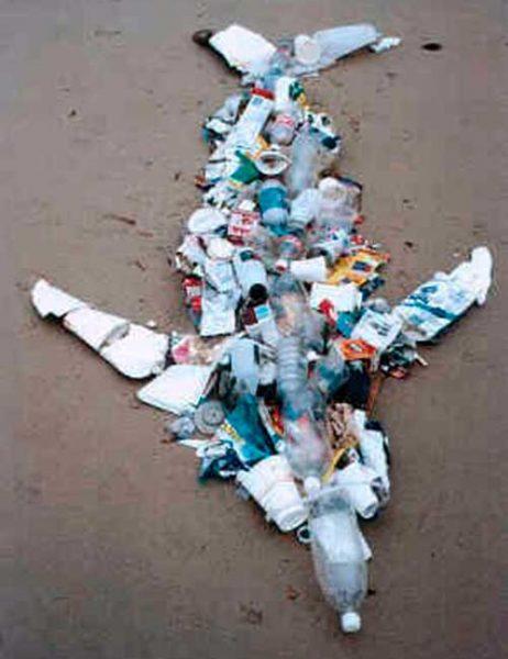 recicla tus plasticos 03 texto